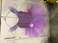 Ballet Costume - Purple Tutu